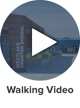 walking-video